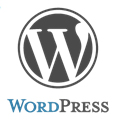IT Outsourcing Informatique wordpress