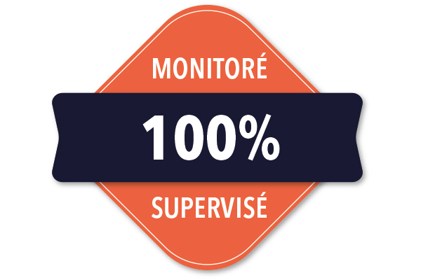 IT Outsourcing Informatique Monitore Badge