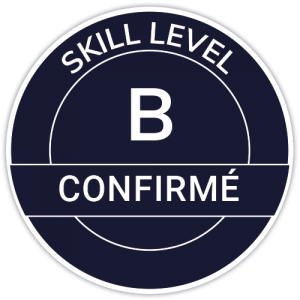 IT Outsourcing Informatique Skill Level Confirme