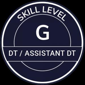 IT Outsourcing Informatique Skill Level DT AssistantDT