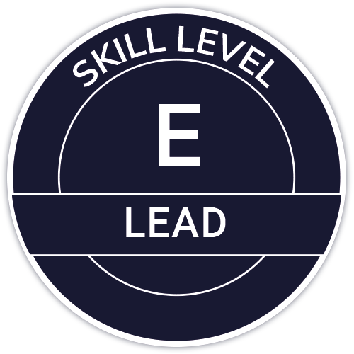 IT Outsourcing Informatique Skill Level Lead