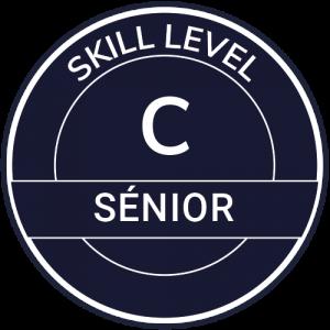 IT Outsourcing Informatique Skill Level Senior