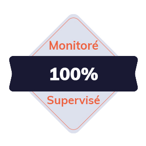 IT Outsourcing Informatique Badge Monitore Supervise