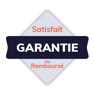 IT Outsourcing Informatique Badge Satisfait Garantie