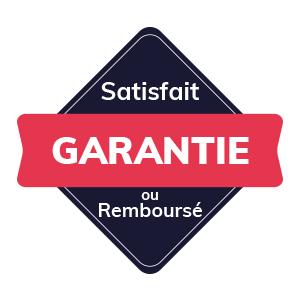 IT Outsourcing Informatique Badge Satisfait Garantie Valentine