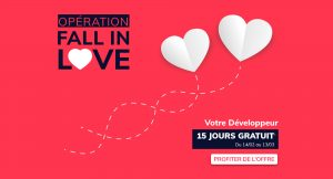 IT Outsourcing Informatique Promotion Valentine Background