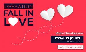 IT Outsourcing Informatique Promotion Valentine Horizontal min 1