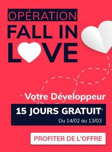 IT Outsourcing Informatique Promotion Valentine Vertical FR min