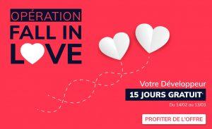 IT Outsourcing Informatique Promotion Valentine Vertical copia 2