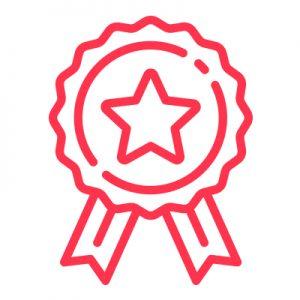 IT Outsourcing Informatique Valentine Promotion Medal