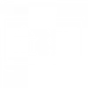 IT Outsourcing Fintech Icon Banking Software white